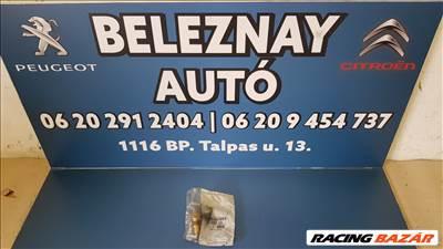 Peugeot,Citroen tolatólámpa kapcsoló 225753